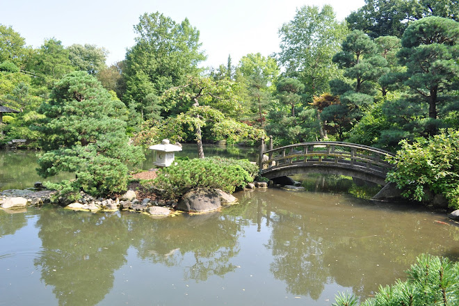 Visit Anderson Japanese Gardens On Your Trip To Rockford