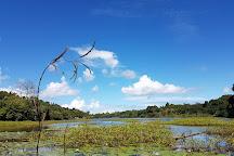 Retenue collinaire de Combani, Combani, Mayotte
