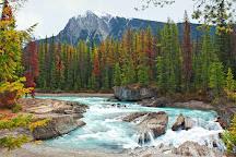 Kicking Horse River, Field, Canada