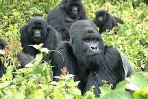 A Step Into Nature Tours, Kigali, Rwanda