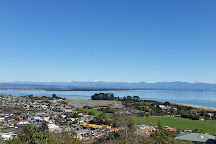 Bay Tours Nelson, Nelson, New Zealand