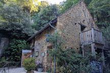Reserve Zoologique de Calviac, Calviac-en-Perigord, France