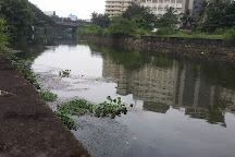 Canolly Canal, Kozhikode, India