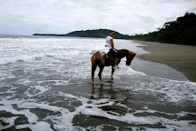 Pleasure Ride Costa Rica, Puerto Viejo de Talamanca, Costa Rica