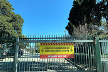 Caulfield Racecourse Reserve, Caulfield, Australia