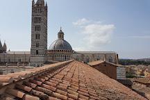 Facciatone, Siena, Italy