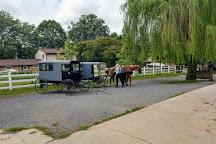 Abe's Buggy Rides, Bird in Hand, United States