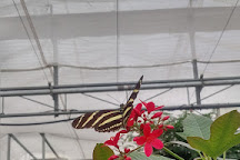 Butterfly House, Whitehouse, United States