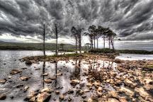 Loch Assynt, Lairg, United Kingdom