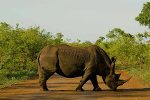 Nandzana Safaris, Phalaborwa, South Africa
