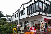 Karuizawa Taliesin, Karuizawa-machi, Japan