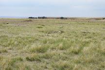 Roberts Prairie Dog Town, Badlands National Park, United States