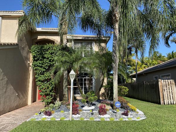 Palm Tree Service Southwest Ranches, FL