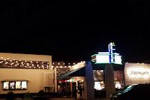 Nickelodeon Theatre, Santa Cruz, United States