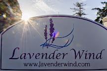 Lavender Wind Farm, Coupeville, United States