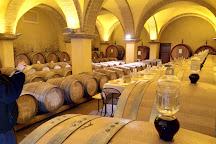 Winery Solaria Patrizia Cencioni, Montalcino, Italy