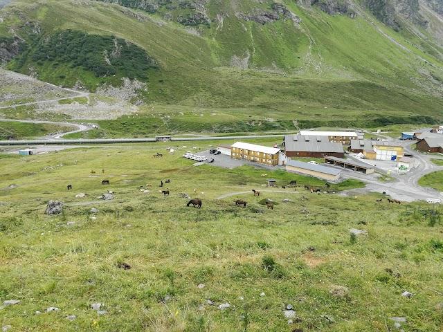 Silvretta Bielerhöhe - Gaschurn Partenen