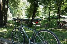 Central Park Bike Tours, New York City, United States