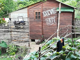 Mbotyi Mountain Bush Camp Map Port St Johns South Africa Mapcarta