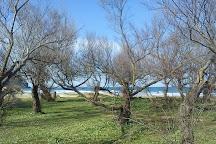 Playa De Berria, Santona, Spain