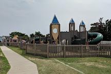 Shark Park, Brigantine, United States