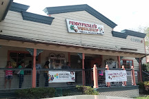 Pennypickle's Workshop - Temecula Children's Museum, Temecula, United States