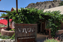 Vivac Winery, Dixon, United States