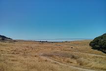 Palo Corona Regional Park, Carmel, United States