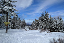 Windblown Cross Country Skiing and Snowshoeing, New Ipswich, United States