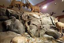 National Bighorn Sheep Center, Dubois, United States