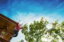 Go Ape Zipline & Adventure Park, Raleigh, United States