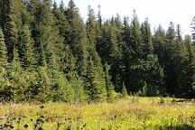 Mowich Lake, Mount Rainier National Park, United States