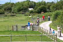 Visit Animal Farm Adventure Park On Your Trip To Berrow