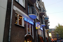 Coffeeshop Bluebird, Amsterdam, The Netherlands