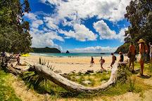 New Chums Beach, Whangapoua, New Zealand