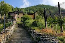 Monte San Giorgio, Brusino Arsizio, Switzerland