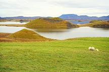 Skutustadagigar, Reykjahlid, Iceland