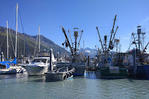 Stan Stephens Glacier & Wildlife Cruises, Valdez, United States