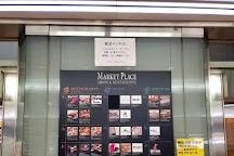 Tokyo International Airport (Haneda) Terminal No2 Observation Deck, Ota, Japan