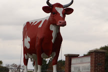 Buffy The Cow, Austin, United States