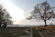Drakamollan Naturreservat, Simrishamn, Sweden