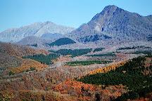 Mt. Karasugasen, Kofu-cho, Japan
