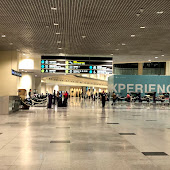 Airport  Domodedovo Airport