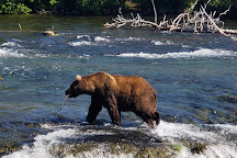 Brooks River, Katmai National Park and Preserve, United States