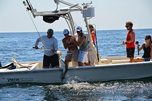 Pensacola Fishing Co. Inshore & Offshore Charters