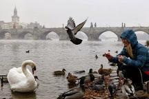 Discover Walks Prague, Prague, Czech Republic