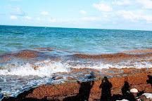 Playa Caracol, Cancun, Mexico