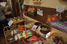 Asian Old Bazaar, Nasu-machi, Japan