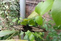 Le Tropique du Papillon, Elne, France