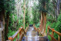 Parque Nacional Los Arrayanes, Villa La Angostura, Argentina